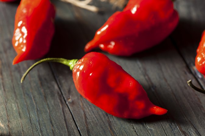 The Dangers of Bhut Jolokia