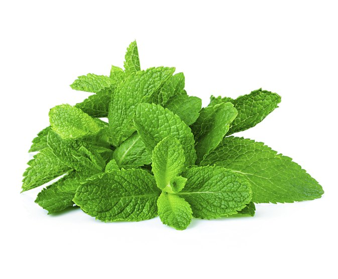 Herbal Mint and Blood Thinning