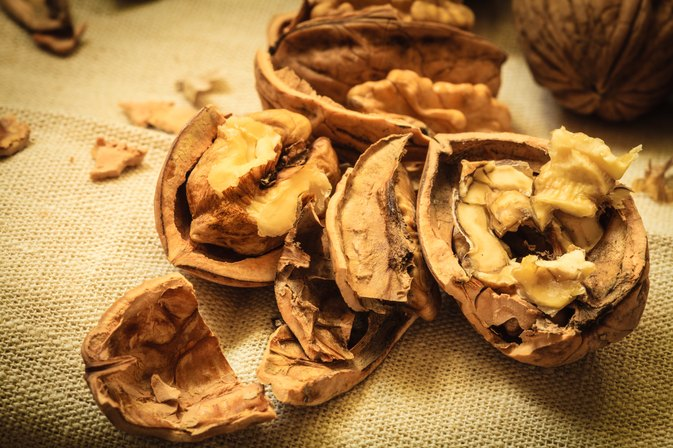 Can Walnuts Upset Your Digestive Tract?