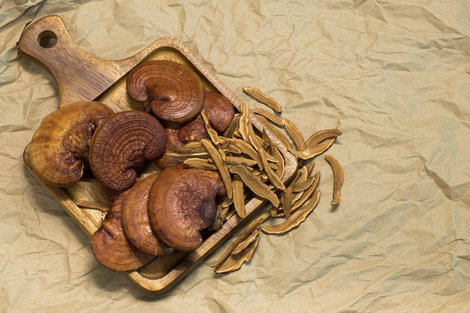 Ganoderma Benefits and Side Effects