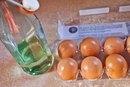 Egg Yolk & Olive Oil for Hair