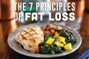 The 7 Principles of Fat Loss
