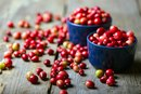 Is Cranberry a Fruit or Vegetable?