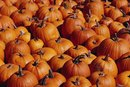 How to Dry Pumpkins