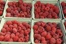 What Fruits Cause Diarrhea?