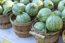 How to Cook Mexican Gray Squash