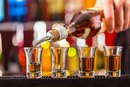 Effects of Alcoholism on Behavior