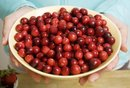 Cranberry Fat Flush Diet