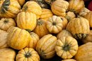 How Long Will Acorn Squash Keep?