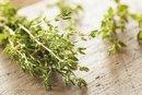 Herbs: Fresh Thyme vs. Dried Thyme