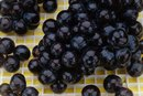 About Blueberries and Gout