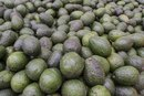 Do Avocados Have Side Effects?