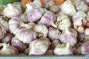 Raw Garlic & Bloating