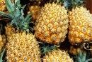 Vitamins & Nutrients in Fresh Pineapple