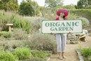 Organic Rolled Oats Vs. Regular