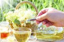 Elder Flower Tea Benefits