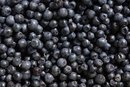 Carb Count in Blueberries
