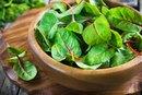 Oxalic & Phytic Acids in Foods