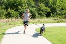 How Fido Can Join You at the Gym and a Surprising Way to Lose 100 Pounds
