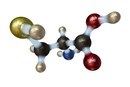 What Are the Four Groups That Make Up Amino Acids?