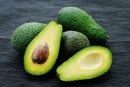 How Does the Body Digest & Metabolize Fat?