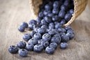 Are Blueberries Bad for a Diet?