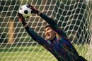 How to Dive as a Goalkeeper