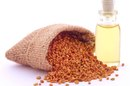 What Are the Dangers of Fenugreek?