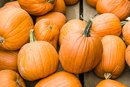 What Vitamins & Minerals Do Pumpkins Contain?