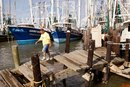 Fishing Hot Spots in Galveston