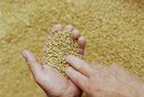How Long After Eating Do Gluten Intolerance Symptoms Last?