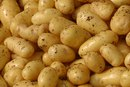 Starch and Glucose in Potatoes