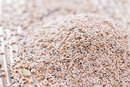Can Psyllium Husk Cause Damage to the Intestines?