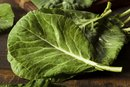 Can Collard Greens Cause Bloating?