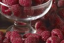 Seedless Raspberries and Fiber