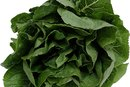 The Difference in Nutrients Between Collard Greens and Spinach