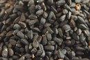 Black Seed & Asthma