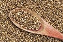 Hemp Seeds for Weight Loss