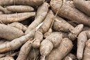 Yucca Root Nutrition