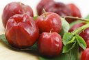What Is Acerola Cherry?