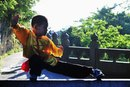 How to Learn Monkey-Style Kung Fu
