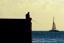 Shore Fishing in Miami