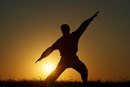List of Kung Fu Fighting Styles