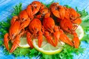 Seafood Allergies & Joint Pain