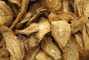 Burdock Root for Hair