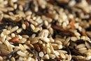 Millet Nutrition Information