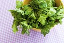 What Are the Benefits of Parsley & Cilantro?