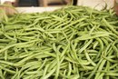 Nutritional Value of String Beans