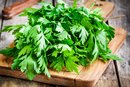 How to Freeze Fresh Cilantro