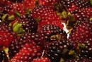 Benefits From Blackberry Juice
